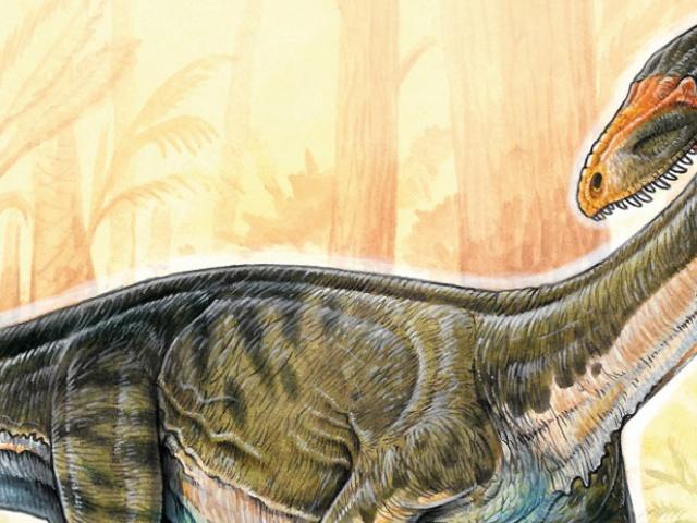 A dínóősök krokodilokra hasonlítottak