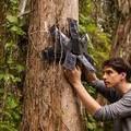 Régi mobilok védik a dzsungelt