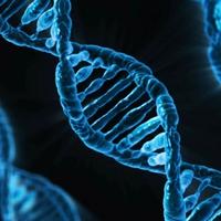 Genetikailag módosított embriók Kínában