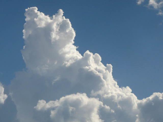 Felhőatlasz a biosokféleségről