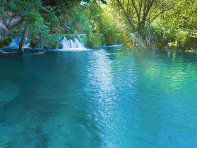 Miért a kék és a zöld a legerősebb szín a természetben?