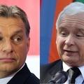 A magyar és lengyel nacionalista fordulat mozgatórugói
