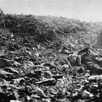 Verdun hullarablói
