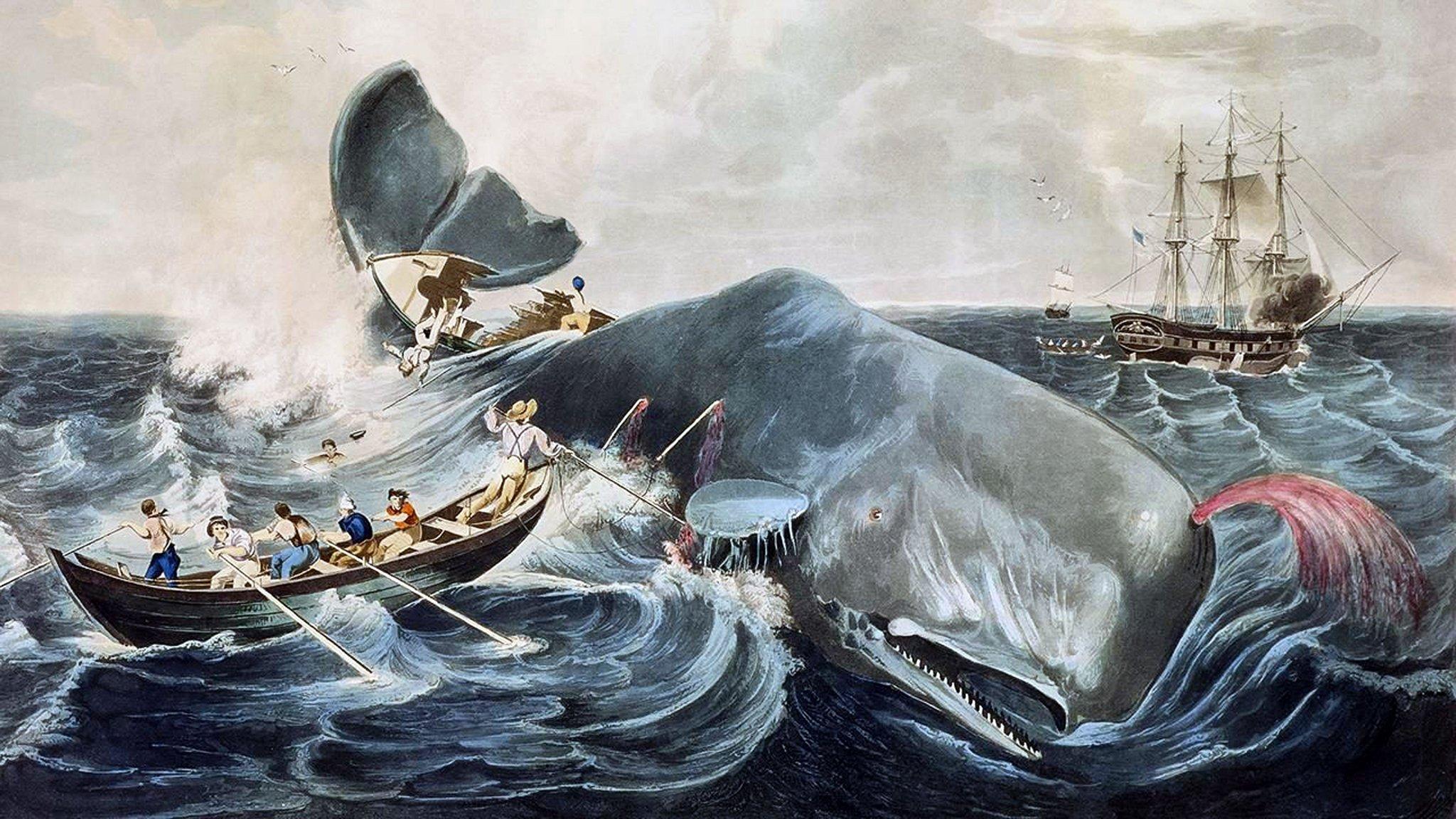 Moby Dick okosabb volt Achabnál