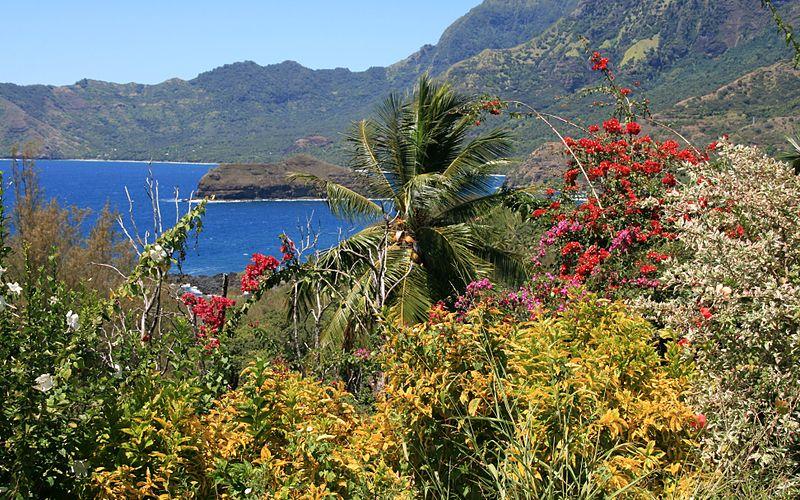 A világon egyedi ökorendszer: a Marquises-szigetek