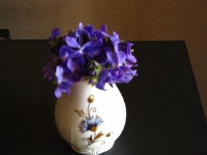 A tavasz virágai 001