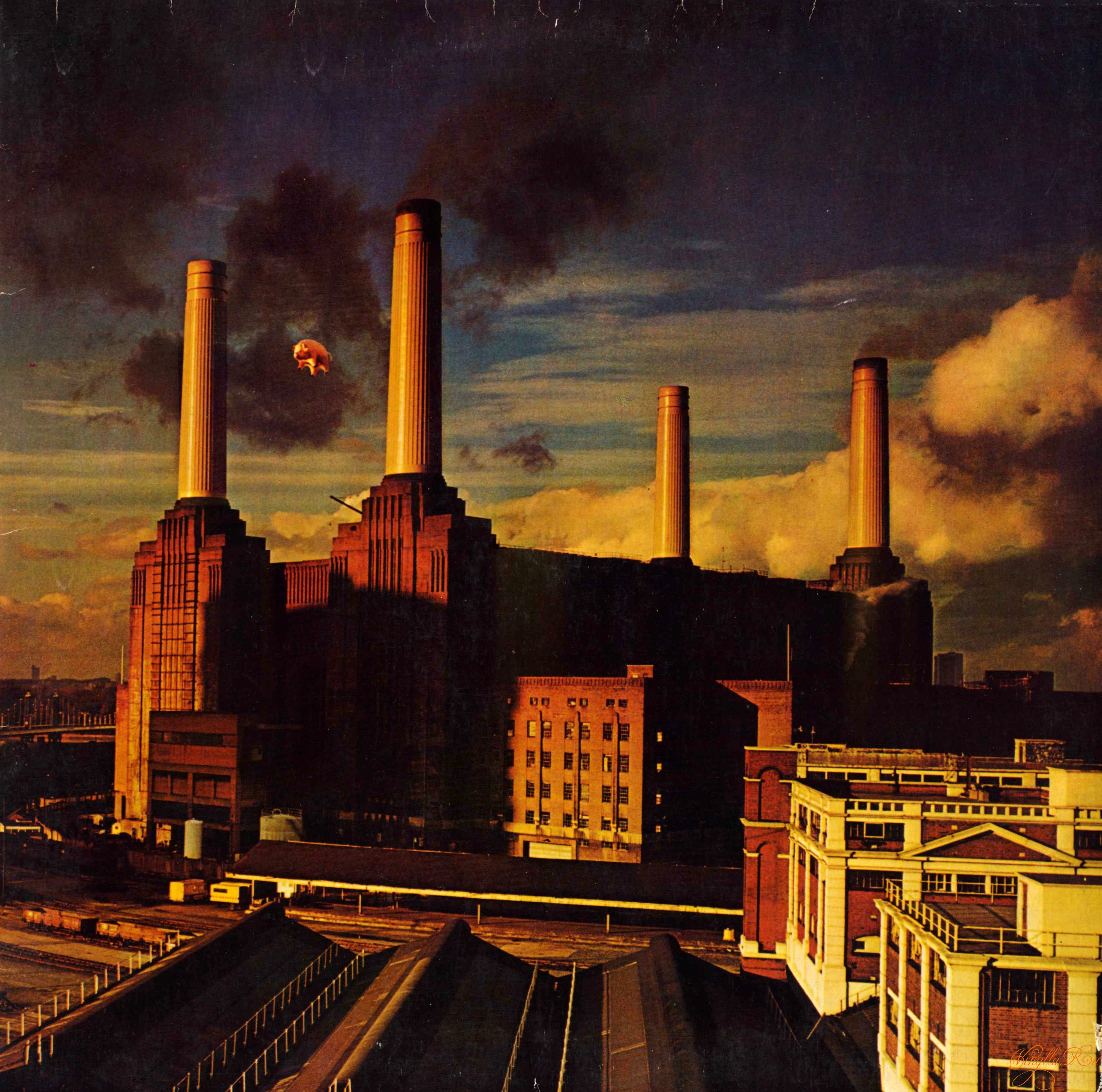 album_cover_pink_floyd_1977_animals.jpg