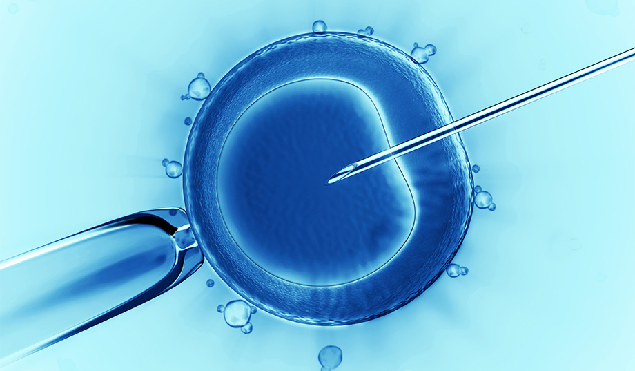 dangers-of-in-vitro-fertilization.jpg