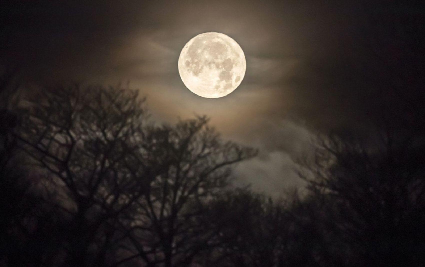 full-moon3.jpg