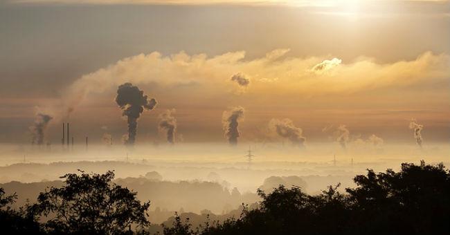 A környezetszennyezés áldozatai