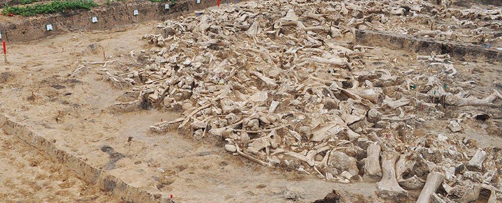 25 ezer éves kör alakú építmény mamutcsontokból