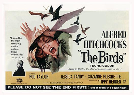 the-birds-horizontal-image-bethel-woods_527.jpg