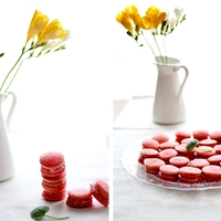Macaronabb Macaron