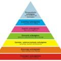 A munkánk és a Maslow-piramis