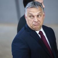 Orbán Viktor: zseni vagy kamikaze?