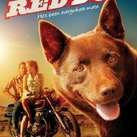 Red Dog (Red Dog, 2011)