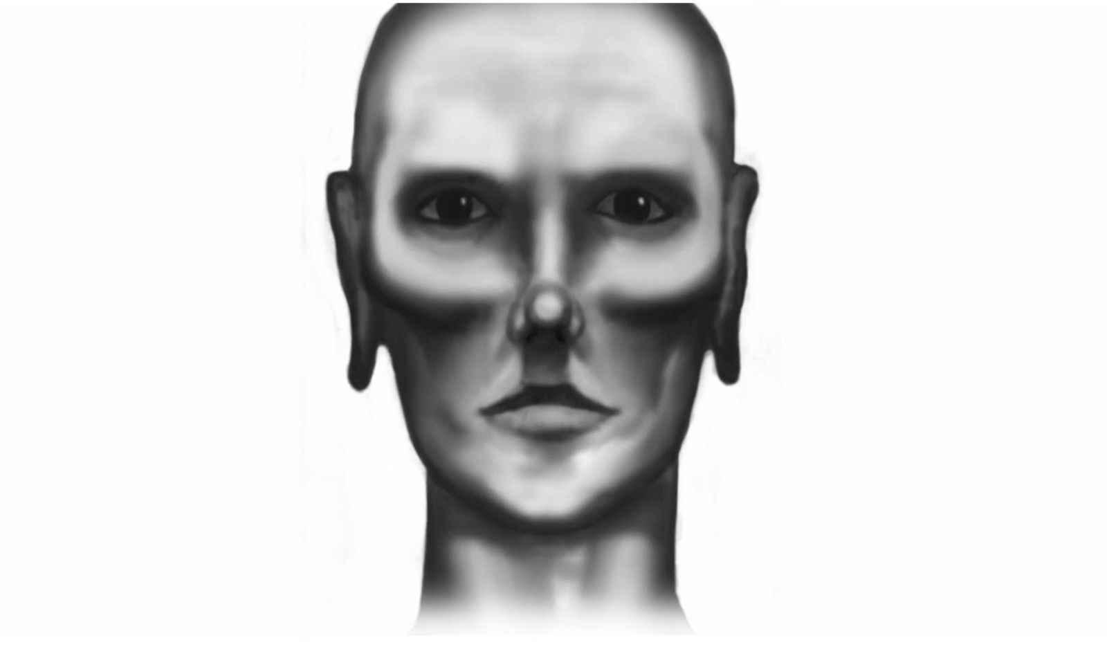 12_face_of_sentinel.jpg
