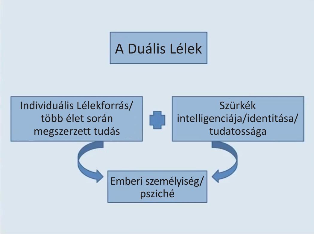 dualis_lelek.jpg