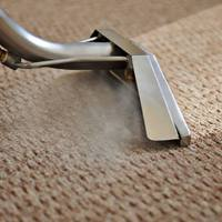 Make Yourself A Better carpet cleaning Video marketing Today