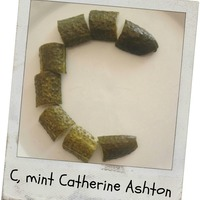 C, mint Catherine Ashton