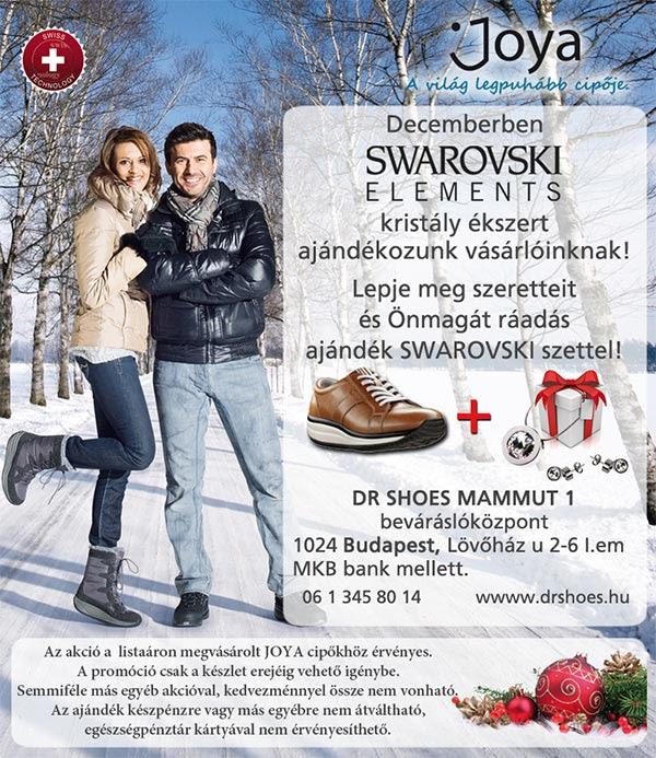 rynshop_swarovszki.jpg