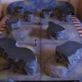 Terepasztal project