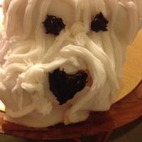 WESTI -torta