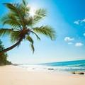 Ha egy mondatban akarnánk jellemezni, mondhatnánk, hogy itt homokos a tengerpart, ragyogóan kék a víz, mindenütt pálmafák teremnek, simogat a kellemes széljárás és egy átlagos nyaralóhelyen megszokottnál kevesebb turista leselkedik ránk. Srí Lanka olyan gyönyörű! Az ajánlat részleteiről érdeklődjön kollégáinknál!