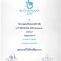 Különdíjat nyert a Gramofon Online