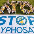 Német kutatás: a glifozát kivonása nem okozna érzékelhető veszteséget a kukoricatermelésben