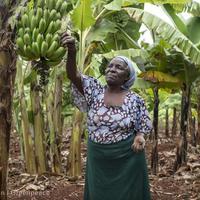 Ez lehet Afrika újragyarmatosítása (2. rész)