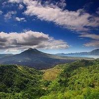 Az indonéz esőerdők és tőzeglápok és a norvégok