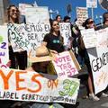 Ki nyeri az amerikai GMO-háborút?