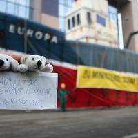 Aktivista jegesmedvék a túlhalászat ellen