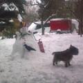 Nosztalgia - hóember a régi iroda kertjében