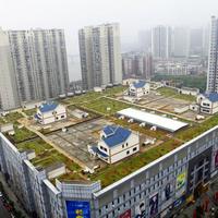 Kína gőzerővel rákapcsolt a zöldtetős megoldásokra