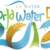 A Víz Világnapja - Ezt kéne tenni a fenntartható vízgazdálkodás érdekében