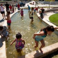 Körforgalom, víztisztító, zöld közösségi tér - egyben