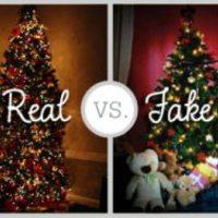 A nagy karácsonyfa-dilemma - mi a zöld megoldás?