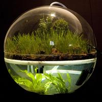 Évszakok rezervátuma? Tanítsanak ökológiát a művészeknek!