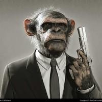 Bodoky Tamás: Öltönyös majmok bolgyója