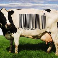 Az élelmiszermarketing titkai - videó