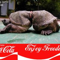 A Coke életérzés