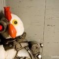 Hormonok a csirkehúsban + LIVE élvedarálás
