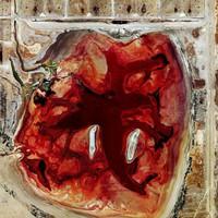 Apokaliptikus légifotók mutatják a nagyipari állattartás Földet pusztító erejét (+ filmek)