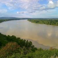 Az Élőlánc Magyarországért álláspontja a dunai árvíz nyomán kialakult helyzetről