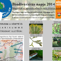 Még több idegenhonos fajt fogunk védeni! Biodiverzitás Napja 2014: Magyarország