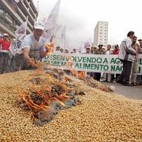 Brazil gazdák követelik pénzüket a Monsanto-tól: nem működnek a génpiszkált termények!
