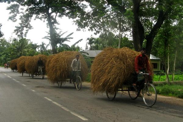 06-bangladesh-rangpur-borga2-happiness.jpg
