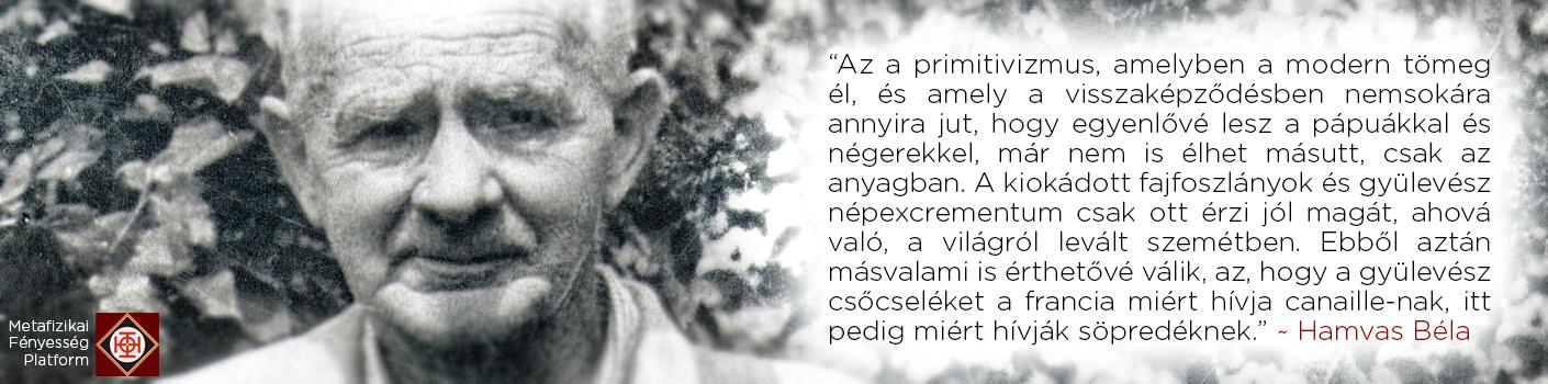 hamvas2.png